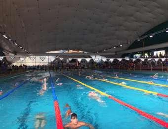 Milano, Finali Regionali di Categoria e Traversata di 2,3 km lago di Mergozzo